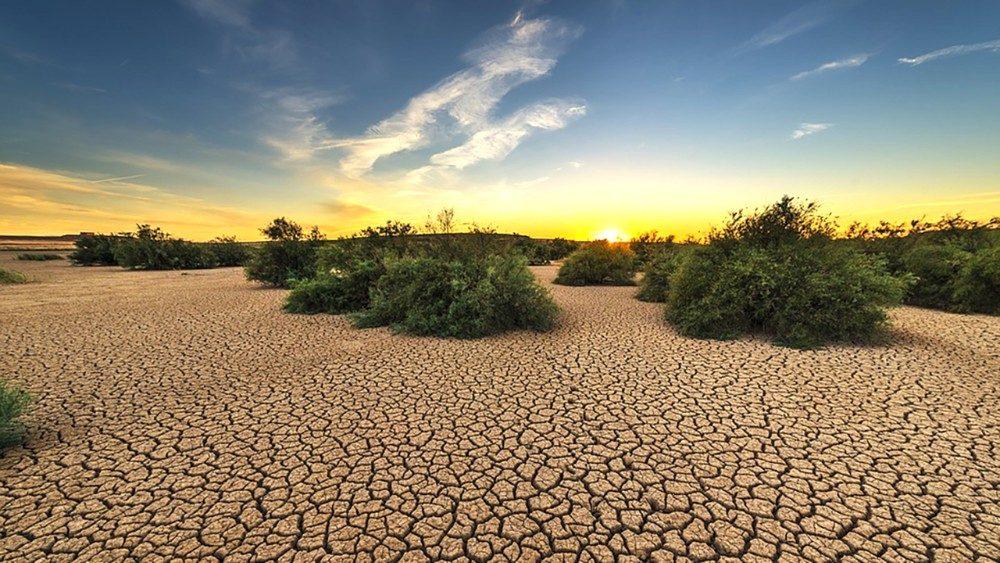 Sequía en México: Causas, consecuencias y acciones para mitigarla